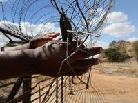 Silas Grecco propõe educação em direitos humanos para a globalização solidária