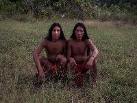 Conselho das Aldeias Wajãpi faz relato sobre trabalho da Funai em território. 31493.jpeg