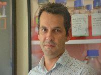 Investigadores da UC descobrem potencial marcador para Hipertensão Arterial Pulmonar. 27495.jpeg
