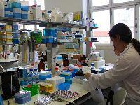 Financiamento europeu a triplicar para biotecnologia da Universidade de Coimbra. 25497.jpeg