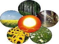 Missão africana interessada em programa energético brasileiro