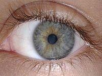 Como blindar a visão na gravidez. 21501.jpeg
