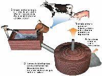 Os Verdes Exigem a Monitorização de Gases, Partículas e do Ruído Provocado Pela Central de Biomassa. 32508.jpeg