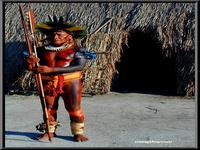 Exposição arqueológica revela a complexidade das sociedades amazônicas