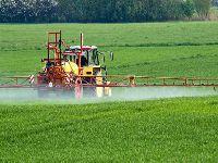 Desinformação desafia o controle do uso de agrotóxicos. 33514.jpeg