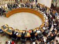 Uruguai assume presidência rotativa do Conselho de Segurança da ONU. 23534.jpeg
