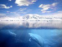 Água vendida como petróleo na Bolsa de NY: para o capitalismo, tudo deve ser privatizado. 34538.jpeg