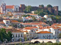Zé da Ponte: Um grande Português!. 21542.jpeg