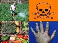 Novo estudo reafirma a associação entre agrotóxicos e o desenvolvimento da Doença de Parkinson