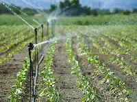 CNA: Negociação da água em bolsa é «ataque predatório» aos recursos naturais. 34551.jpeg