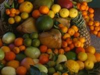 Rio receberá Feira da Agricultura Familiar
