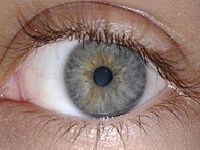 Ar condicionado aumenta risco de olho seco. 25556.jpeg