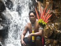 Combater o garimpo ilegal e promover a desintrusão da Terra Indígena. 33561.jpeg