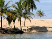 Novo plano de segurança para Alagoas 'lei seca'