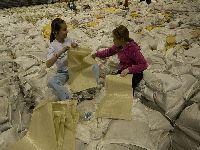 Os Verdes opõem-se à utilização dos sacos de plástico na batalha das limas. 30563.jpeg