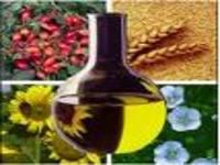 Biodiesel incorpora a diversidade da agricultura