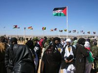 PEV pede esclarecimentos sobre acordos com Marrocos no Sahara Ocidental. 24568.jpeg