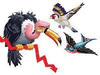 O pintassilva aquilino e o urubu-atucanado travestido de condor. 27568.jpeg