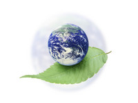 """""""Os Verdes"""" e Ecolojovem em acção no dia mundial do ambiente"""