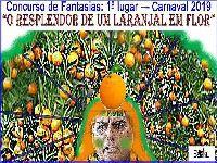 Bolsonaro detona o cartão corporativo. 30580.jpeg