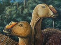 Maior descoberta de fósseis na China