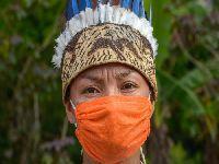 Liminar do STF obriga governo a proteger povos indígenas durante a pandemia. 33584.jpeg