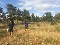 Estudo luso-espanhol ajuda a compreender e a prever os efeitos das alterações climáticas na biodiversidade do solo. 34584.jpeg