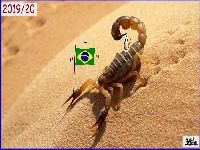 Bolsonaro sepulta a integração sul-americana. 30585.jpeg