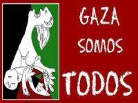 Gaza não está só. Estamos em Gaza!. 17586.jpeg