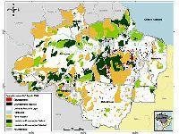 Ibama  - Desmatamento na Amazônia. 25588.jpeg
