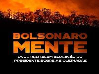Bolsonaro não precisa das ONGs para queimar a imagem do Brasil no mundo inteiro. 31596.jpeg