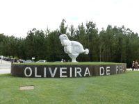Agrupamento de Escolas de Oliveira de Frades. 23600.jpeg