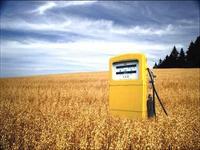 Brasil reafirma benefícios ambientais e econômicos dos biocombustíveis na FAO