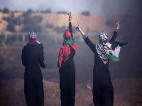 Devemos nos inspirar na resistência da mulher palestina. 30606.jpeg