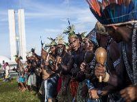 Em meio ao maior ataque aos direitos indígenas dos últimos 30 anos. 28623.jpeg