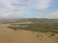 Os Verdes Alertam para a Destruição da Reserva Ornitológica do Mindelo. 31631.jpeg