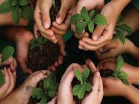 A construção de outro modelo de finanças depende de uma estratégia socioambiental. 29637.jpeg