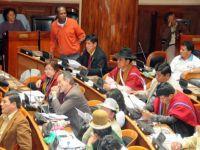 Integração indígena marca êxito do governo da Bolívia, diz Linera. 23639.jpeg