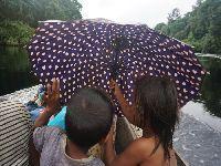 Na linha de frente contra a Covid-19, povo Dâw reforça resgate de antigos caminhos no Rio Negro. 33639.jpeg