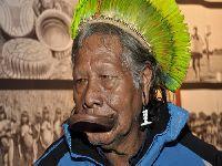 Raoni divulga carta com pedido de ação ao G7 pela Amazônia. 31649.jpeg