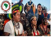 Povos indígenas descrevem tratamento humilhante do governo brasileiro. 33651.jpeg