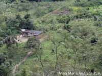 Liminar determina que quilombo de Bombas, no Vale do Ribeira, tenha estrada de acesso. 22655.jpeg