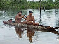 O Xingu vem até você. 26657.jpeg