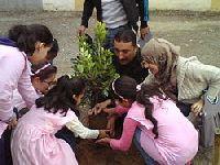 Dia Mundial da Árvore, Os Verdes entregam Carta Aberta à CML. 30659.jpeg