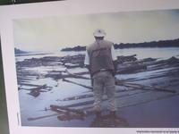 Amazônia: Desmatamento ilegal cresce