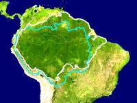 Amazónia, os incendiários gritam: 'Há fogo!'. 31662.png