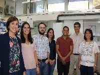 Nova geração de polímeros para eliminar bactérias em ambiente hospitalar. 29673.jpeg
