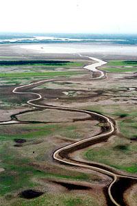 Rio Amazonas é o mais extenso do mundo