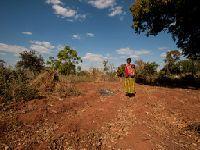 UNICEF lança relatório global sobre o impacto do fenómeno El Niño nas crianças. 24681.jpeg