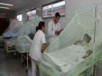 Epidemia de dengue registra mais de sete mil casos. 18690.jpeg
